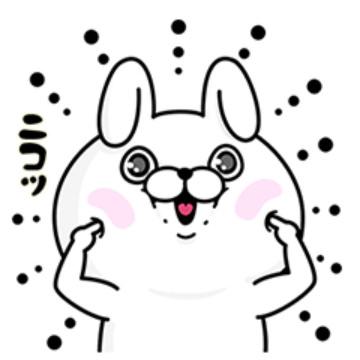 【無料】fracora×うさぎ100パーセント【LINEスタンプ】
