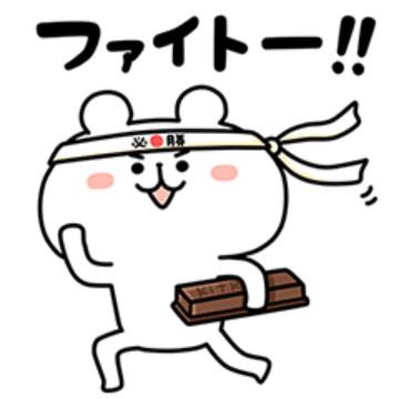 【無料】キットカット×ゆるくま受験生応援スタンプ【LINEスタンプ】