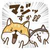 【無料】新キャラでたよ!柴太郎&はちこ第3弾【LINEスタンプ】
