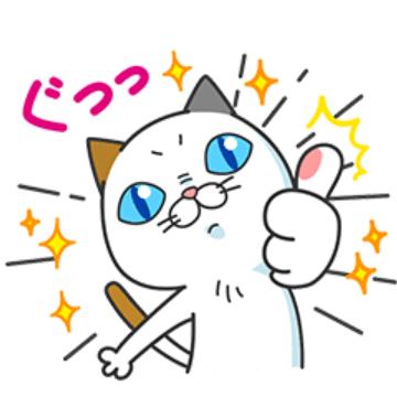 【無料】タマ川 ヨシ子(猫)あけまして第13弾!【LINEスタンプ】