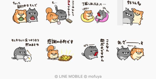 【無料】節約に励むボンレス犬&ボンレス猫【LINEスタンプ】