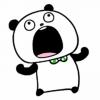 【無料】LINEほけん × ごきげんぱんだ【LINEスタンプ】